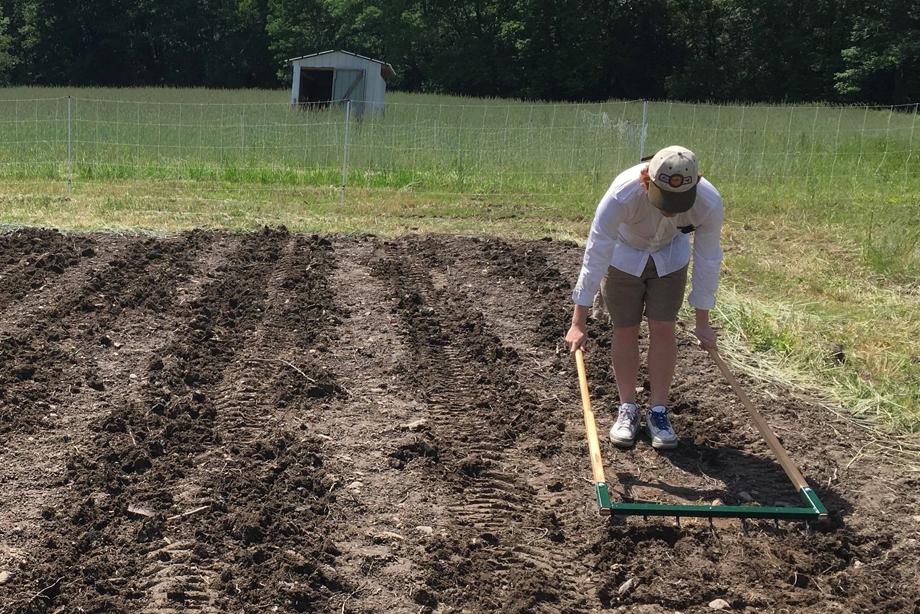 Lovin Mama Farm Colonie Senior Service Center Colonie Ny
